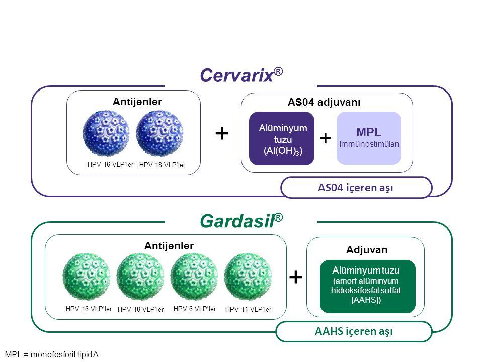 + Alüminyum tuzu (amorf alüminyum hidroksifosfat sülfat [AAHS]) HPV 16 VLP ler HPV 18 VLP ler HPV 6 VLP ler HPV 11 VLP ler Antijenler + HPV 16 VLP ler HPV 18 VLP ler Antijenler AS04 adjuvanı AS04 içeren aşı AAHS içeren aşı Adjuvan + Alüminyum tuzu (Al(OH) 3 ) MPL İmmünostimülan Cervarix ® Gardasil ® MPL = monofosforil lipid A.