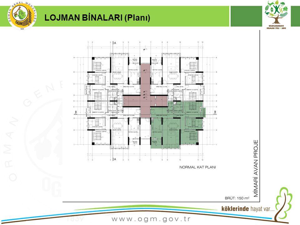 16/12/2010 Kurumsal Kimlik 19 LOJMAN BİNALARI (Planı)