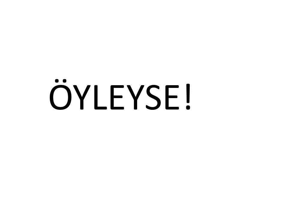 ÖYLEYSE!