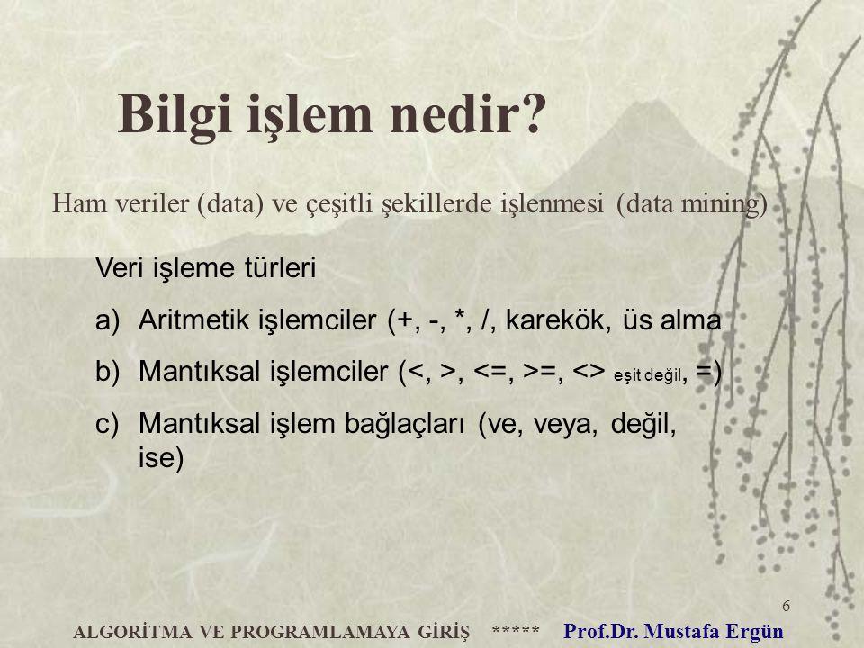 6 ALGORİTMA VE PROGRAMLAMAYA GİRİŞ ***** Prof.Dr.Mustafa Ergün Bilgi işlem nedir.