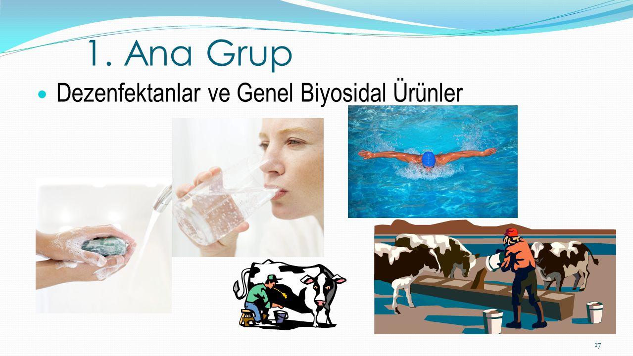 Dezenfektanlar ve Genel Biyosidal Ürünler 17 1. Ana Grup