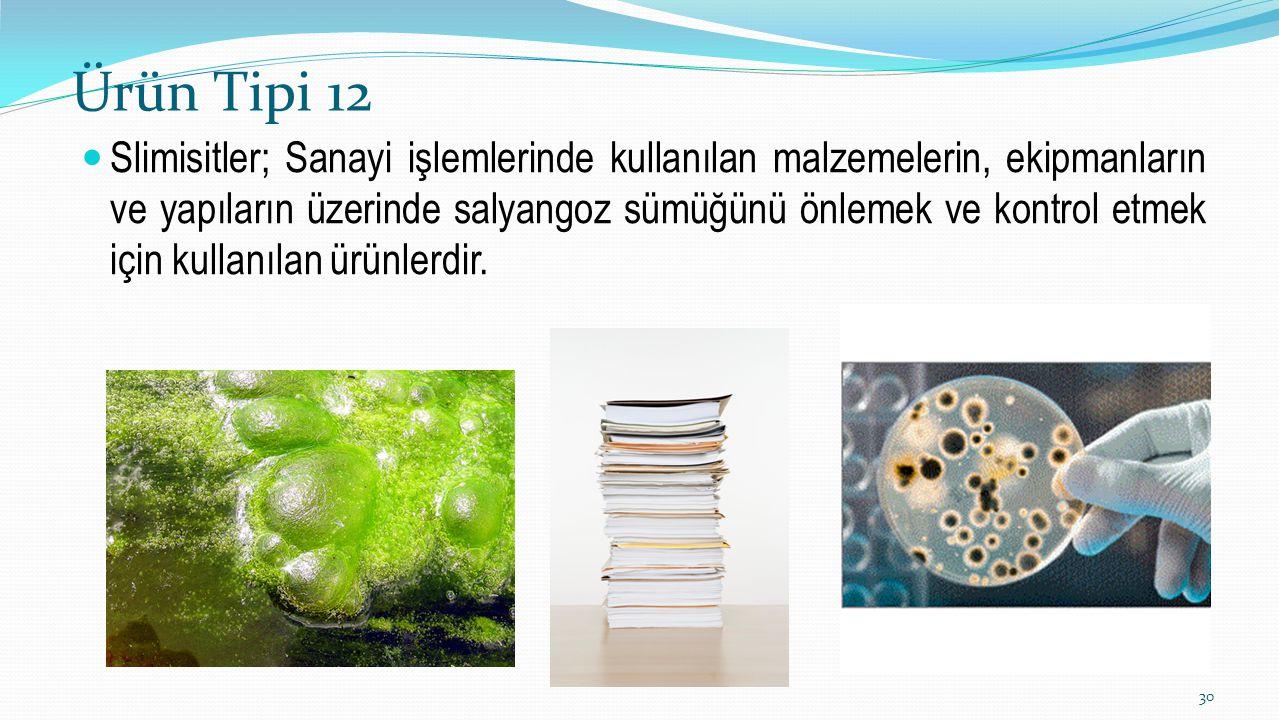 Ürün Tipi 12 Slimisitler; Sanayi işlemlerinde kullanılan malzemelerin, ekipmanların ve yapıların üzerinde salyangoz sümüğünü önlemek ve kontrol etmek