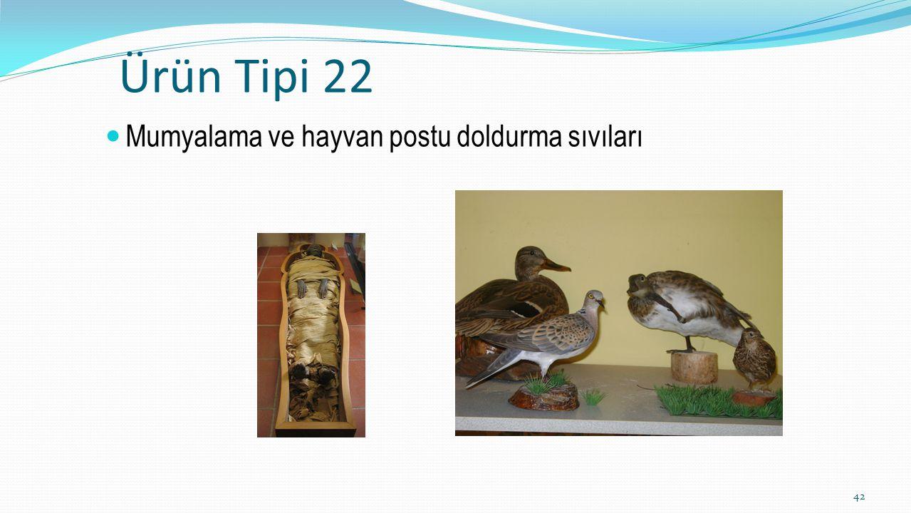Ürün Tipi 22 Mumyalama ve hayvan postu doldurma sıvıları 42