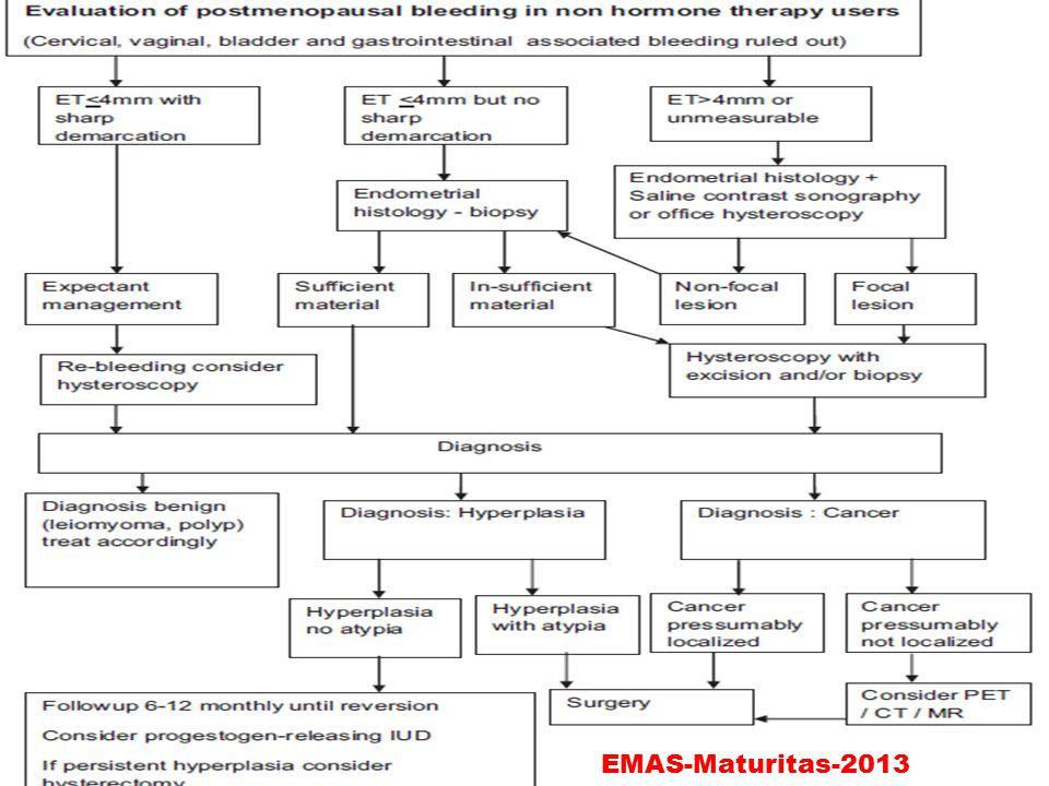 EMAS-Maturitas-2013
