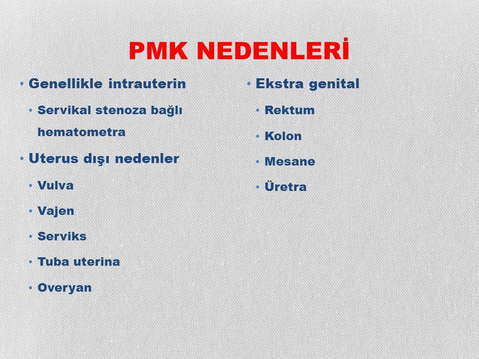 TRANSVAJİNAL ULTRASONOĞRAFİ (TVS) Asemptomatik postmenopozal hastalarda Ortalama EK 2.9 mm End.