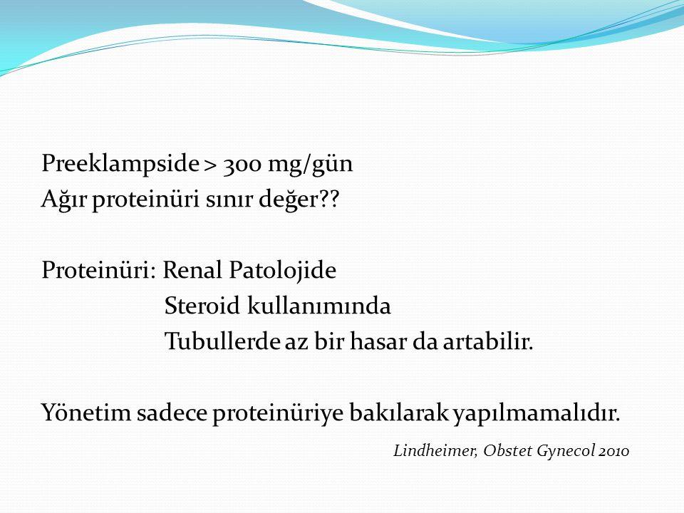 Apolipoprotein E: Preeklampside anormal lipid profili VLDL metabolizmasında Genomics, Proteomics, Metabolomics
