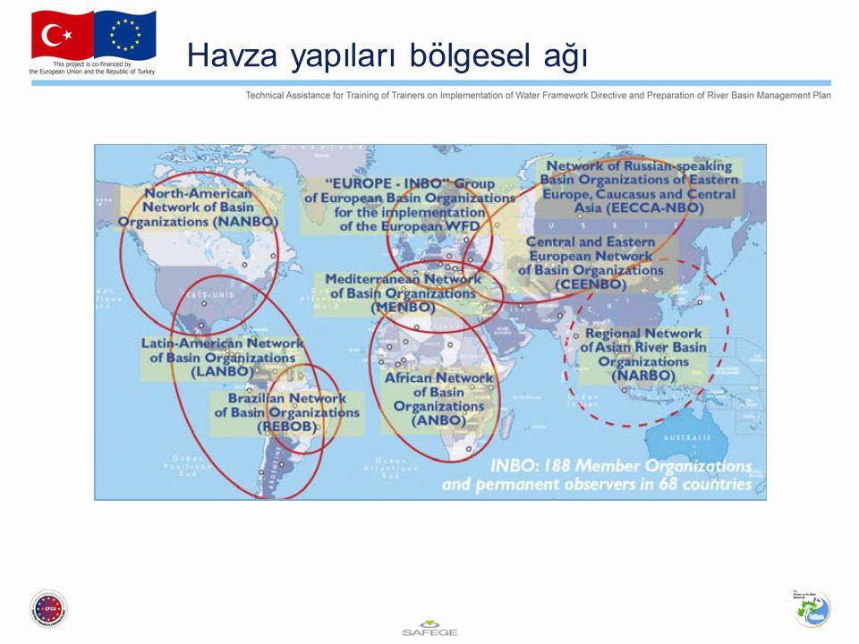 Havza yapıları bölgesel ağı