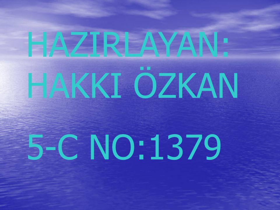 HAZIRLAYAN: HAKKI ÖZKAN 5-C NO:1379