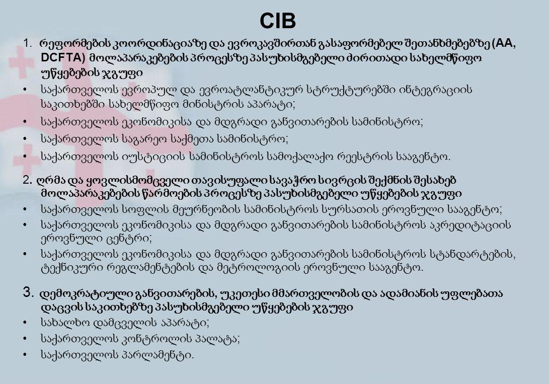 CIB 1. რეფორმების კოორდინაციაზე და ევროკავშირთან გასაფორმებელ შეთანხმებებზე (AA, DCFTA) მოლაპარაკებების პროცესზე პასუხისმგებელი ძირითადი სახელმწიფო უწ