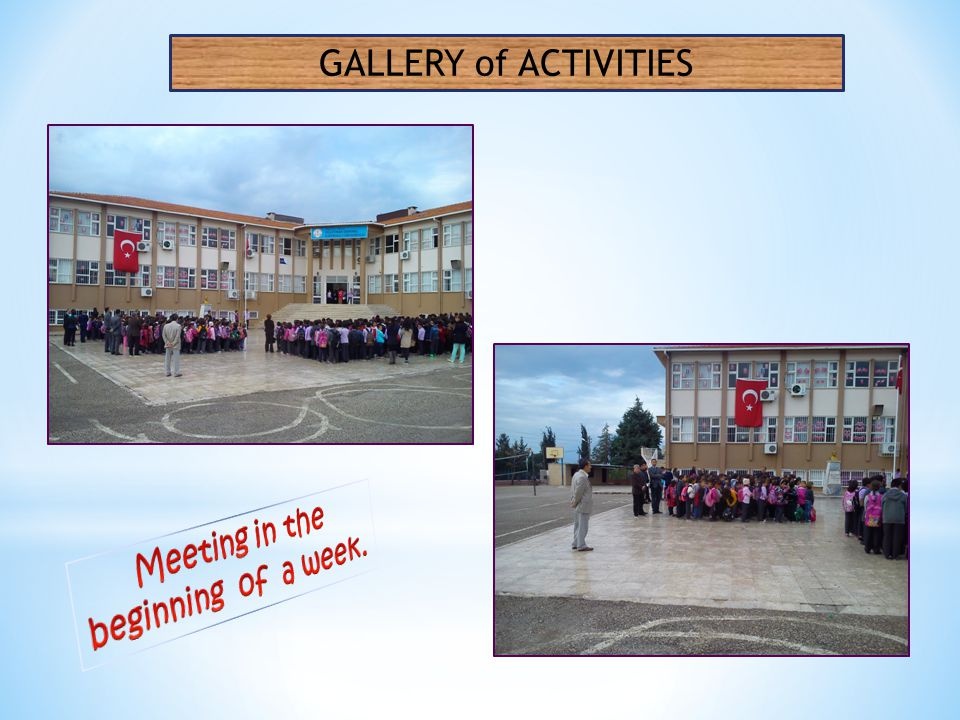 GALLERY of ACTIVITIES