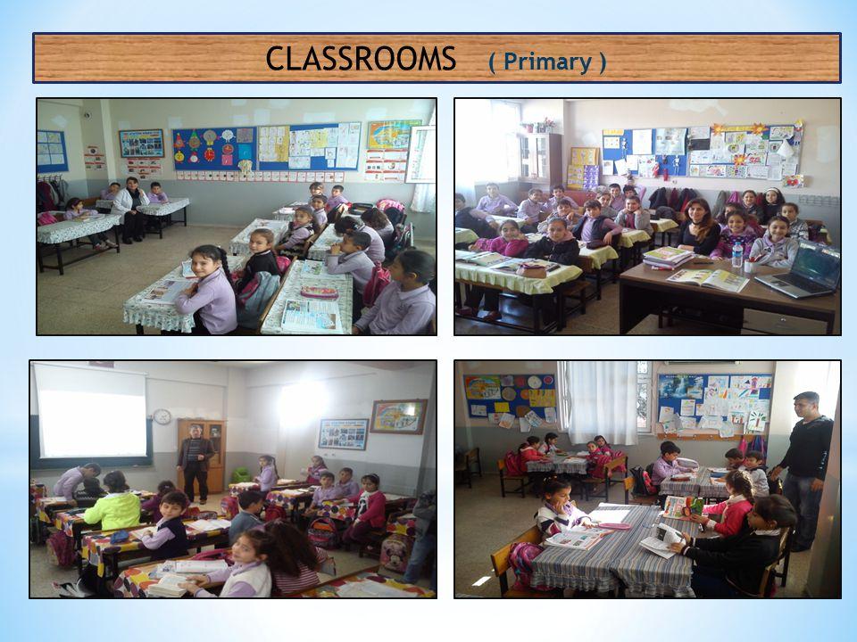 CLASSROOMS ( Primary )