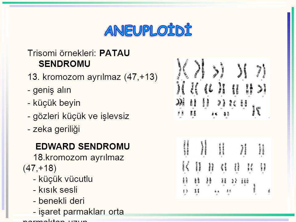 polisomi  Diploid canlının kromozom sayısına bir veya tane daha eklenmesiyle oluşan mutasyona polisomi, eğer 1 tane kromozom ekleniyorsa trisomi deni