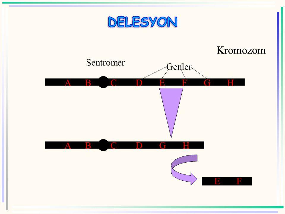  Örn: kedi çığlığı sendromu Hatalı gelişim gösterirler. Ağlamaları kedi miyavlaması gibidir Kısmi monosomi de denebilir
