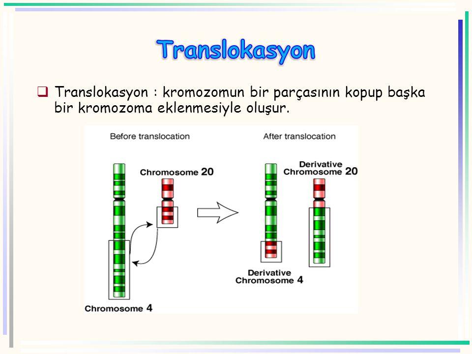 Kromozom Sentromer A B C D F E G H Genler A B C D E F G H Inversiyon