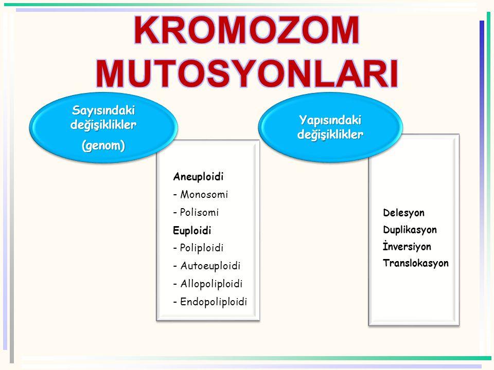 Aneuploidi - Monosomi - Polisomi Euploidi - Poliploidi - Autoeuploidi - Allopoliploidi - Endopoliploidi Sayısındaki değişiklikler (genom) Delesyon Duplikasyon İnversiyon Translokasyon Yapısındaki değişiklikler