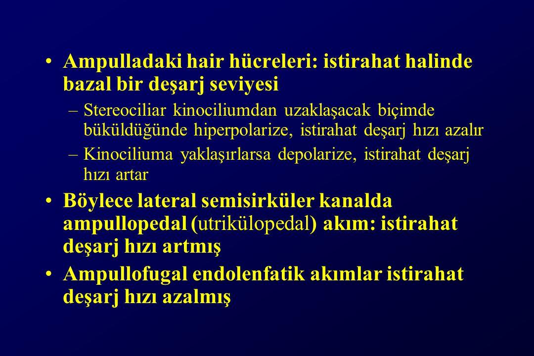 Ampulladaki hair hücreleri: istirahat halinde bazal bir deşarj seviyesi –Stereociliar kinociliumdan uzaklaşacak biçimde büküldüğünde hiperpolarize, istirahat deşarj hızı azalır –Kinociliuma yaklaşırlarsa depolarize, istirahat deşarj hızı artar Böylece lateral semisirküler kanalda ampullopedal (utrikülopedal) akım: istirahat deşarj hızı artmış Ampullofugal endolenfatik akımlar istirahat deşarj hızı azalmış