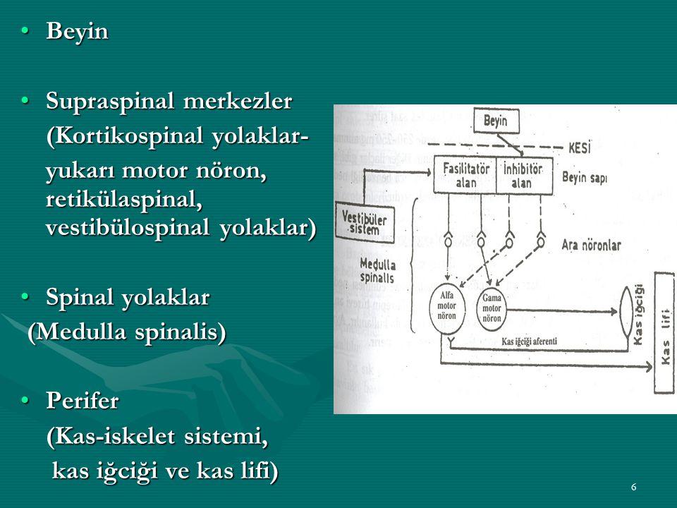 6 BeyinBeyin Supraspinal merkezlerSupraspinal merkezler (Kortikospinal yolaklar- yukarı motor nöron, retikülaspinal, vestibülospinal yolaklar) Spinal yolaklarSpinal yolaklar (Medulla spinalis) (Medulla spinalis) PeriferPerifer (Kas-iskelet sistemi, kas iğciği ve kas lifi) kas iğciği ve kas lifi)