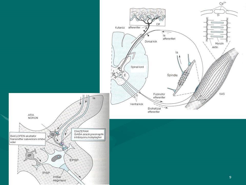 30 Santral Etkili Kas Gevşeticiler (Myörelaksanlar/Smazmolitikler) 3)Çeşitli İlaçlar TİOKOLŞİKOZİD Kolşisin glikozidi GABA A ve Glisinerjik reseptörler üzerine agonistik etki gösterir (Glisinerjik reseptörler: Beyin sapında ve omurilikte ara-nöronlar tarafından salıverilen inhibitör nöronediyatör glisin tarafından etkilenirler.) GABA A reseptörünü allosterik olarak aktive eden barbitüratların antagonisti PİKROTOKSİN'in ve glisinin antagonisti STRİKNİN'in yaptığı konvülsiyonları önler.