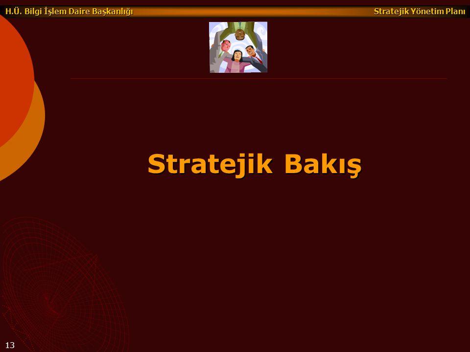 Stratejik Yönetim Planı H.Ü. Bilgi İşlem Daire Başkanlığı 13 Stratejik Bakış