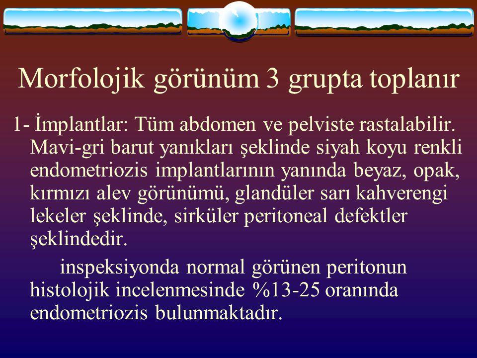 Morfolojik görünüm 3 grupta toplanır 1- İmplantlar: Tüm abdomen ve pelviste rastalabilir. Mavi-gri barut yanıkları şeklinde siyah koyu renkli endometr