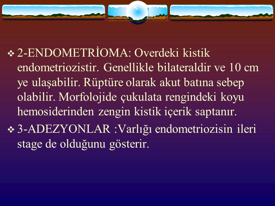  2-ENDOMETRİOMA: Overdeki kistik endometriozistir. Genellikle bilateraldir ve 10 cm ye ulaşabilir. Rüptüre olarak akut batına sebep olabilir. Morfolo