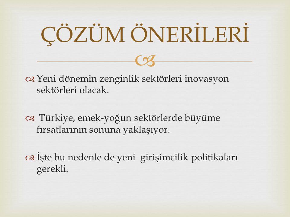   Türkiye nüfusunun önemli bir girişimci potansiyeli olan kadınlar ve gençler girişimci olarak değerlendirilememektedir.