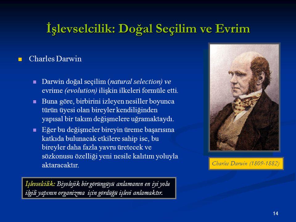 14 İşlevselcilik: Doğal Seçilim ve Evrim Charles Darwin Darwin doğal seçilim (natural selection) ve evrime (evolution) ilişkin ilkeleri formüle etti.