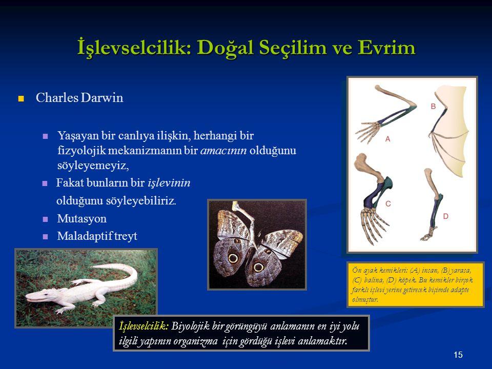 15 İşlevselcilik: Doğal Seçilim ve Evrim Charles Darwin Yaşayan bir canlıya ilişkin, herhangi bir fizyolojik mekanizmanın bir amacının olduğunu söyleyemeyiz, Fakat bunların bir işlevinin olduğunu söyleyebiliriz.