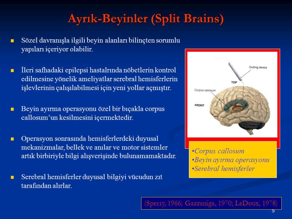 5 Corpus callosum Beyin ayırma operasyonu Serebral hemisferler Ayrık-Beyinler (Split Brains) Sözel davranışla ilgili beyin alanları bilinçten sorumlu yapıları içeriyor olabilir.