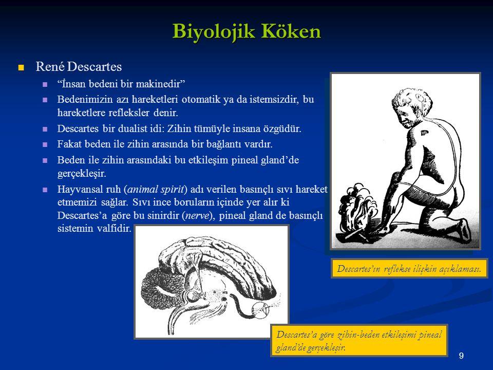 9 Biyolojik Köken René Descartes İnsan bedeni bir makinedir Bedenimizin azı hareketleri otomatik ya da istemsizdir, bu hareketlere refleksler denir.