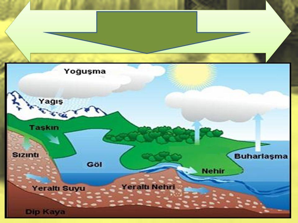 DOĞADA SU DÖNGÜSÜ Güneş yeryüzündeki karaları ve suları ısıtır.