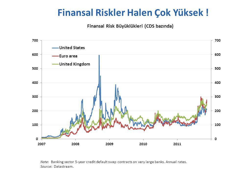 Finansal Riskler Halen Çok Yüksek .
