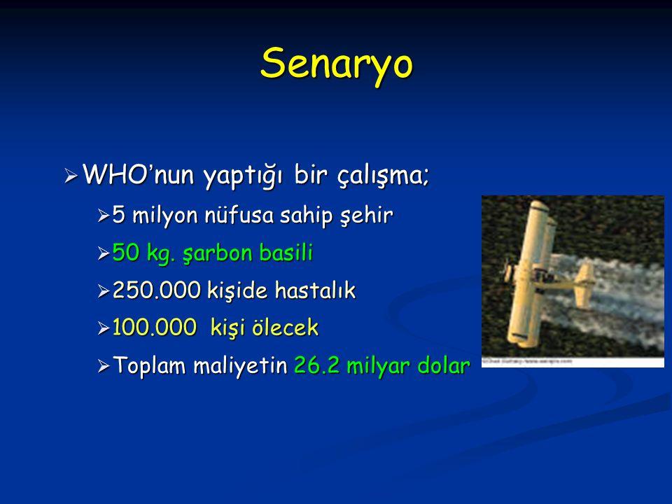  WHO ' nun yaptığı bir çalışma;  5 milyon nüfusa sahip şehir  50 kg. şarbon basili  250.000 kişide hastalık  100.000 kişi ölecek  Toplam maliyet