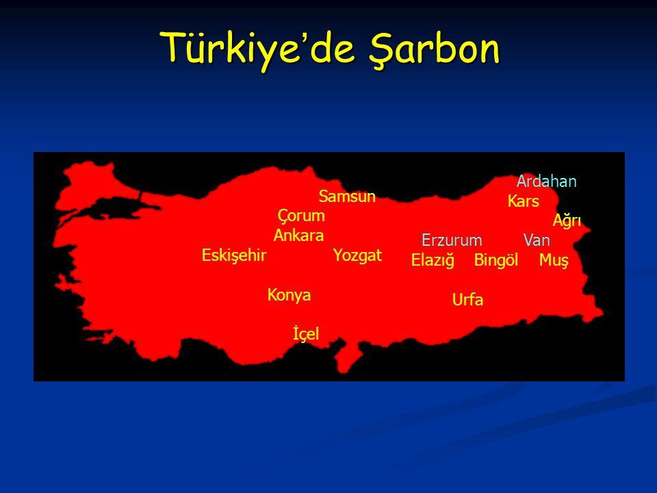 Ardahan Kars Ağrı Erzurum Van Elazığ Bingöl Muş Urfa Samsun Çorum Ankara EskişehirYozgat Konya İçel Türkiye'de Şarbon