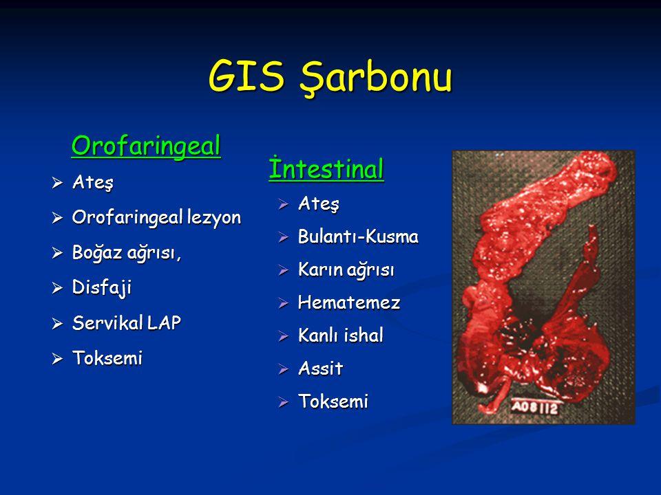 GIS Şarbonu Orofaringeal  Ateş  Orofaringeal lezyon  Boğaz ağrısı,  Disfaji  Servikal LAP  Toksemi İntestinal İntestinal  Ateş  Bulantı-Kusma