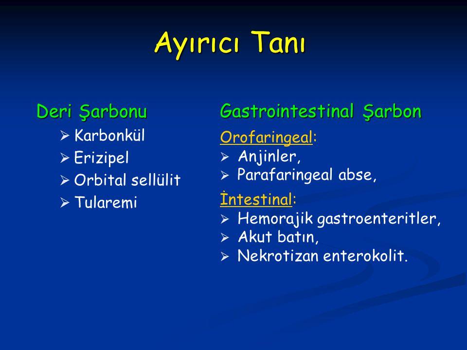 Ayırıcı Tanı Deri Şarbonu   Karbonkül   Erizipel   Orbital sellülit   Tularemi Gastrointestinal Şarbon Orofaringeal:   Anjinler,   Parafar