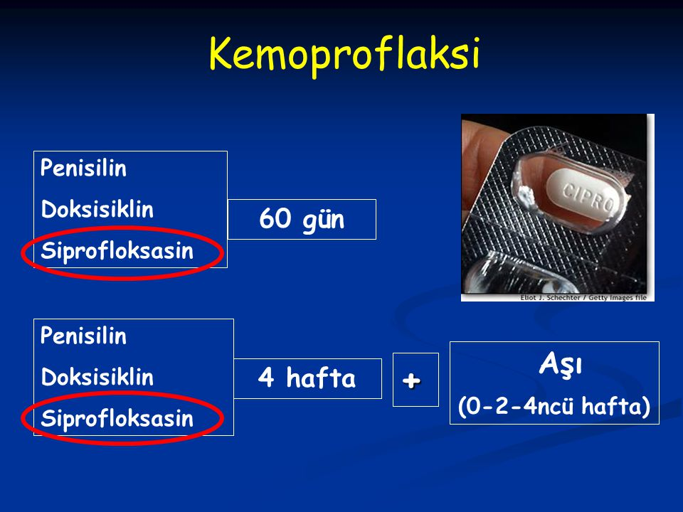 Kemoproflaksi Penisilin Doksisiklin Siprofloksasin Penisilin Doksisiklin Siprofloksasin Aşı (0-2-4ncü hafta) 4 hafta + 60 gün
