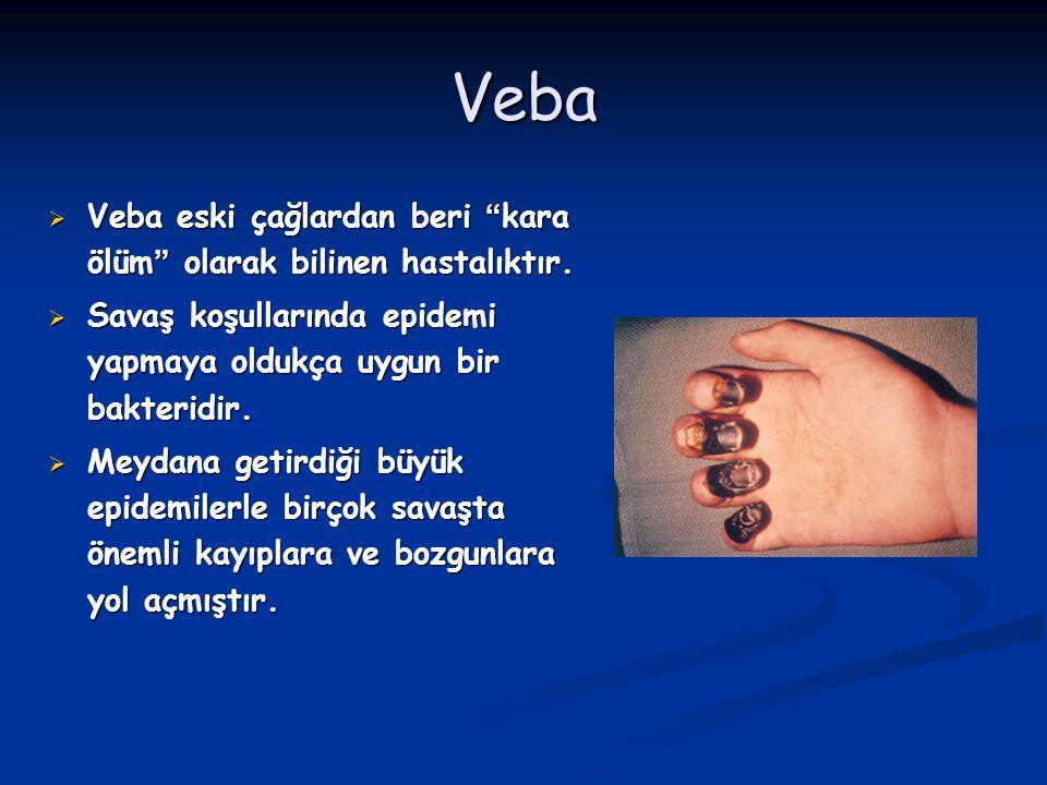 """Veba  Veba eski çağlardan beri """"kara ölüm"""" olarak bilinen hastalıktır.  Savaş koşullarında epidemi yapmaya oldukça uygun bir bakteridir.  Meydana g"""