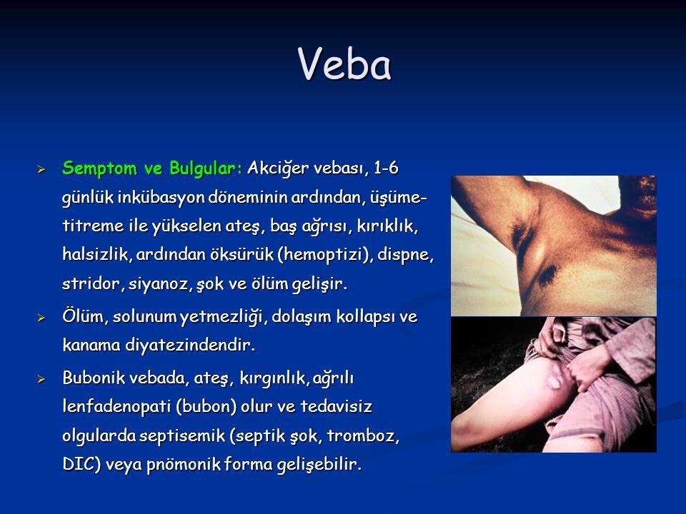 Veba  Semptom ve Bulgular: Akciğer vebası, 1-6 günlük inkübasyon döneminin ardından, üşüme- titreme ile yükselen ateş, baş ağrısı, kırıklık, halsizli