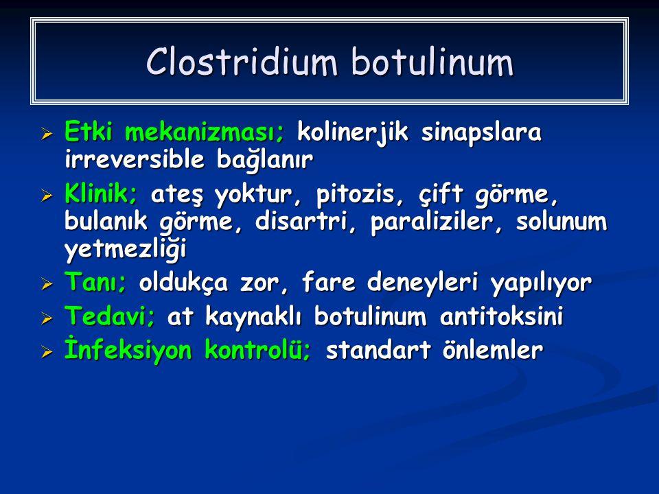Clostridium botulinum  Etki mekanizması; kolinerjik sinapslara irreversible bağlanır  Klinik; ateş yoktur, pitozis, çift görme, bulanık görme, disar