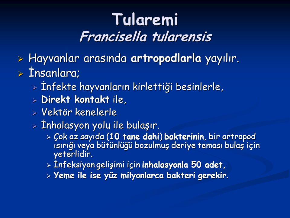 Tularemi Francisella tularensis  Hayvanlar arasında artropodlarla yayılır.  İnsanlara;  İnfekte hayvanların kirlettiği besinlerle,  Direkt kontakt