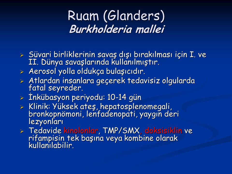 Ruam (Glanders) Burkholderia mallei  Süvari birliklerinin savaş dışı bırakılması için I. ve II. Dünya savaşlarında kullanılmıştır.  Aerosol yolla ol