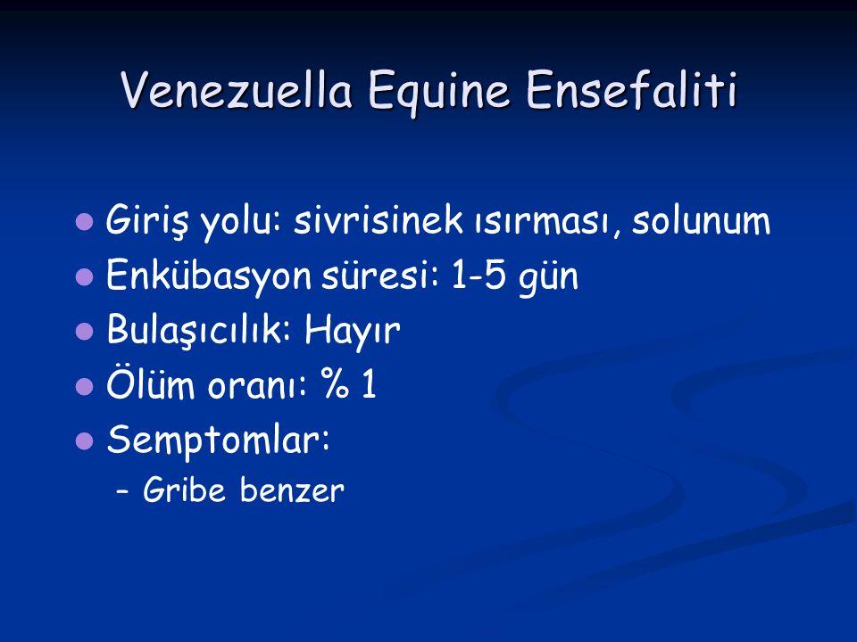 Venezuella Equine Ensefaliti Giriş yolu: sivrisinek ısırması, solunum Enkübasyon süresi: 1-5 gün Bulaşıcılık: Hayır Ölüm oranı: % 1 Semptomlar: – – Gr