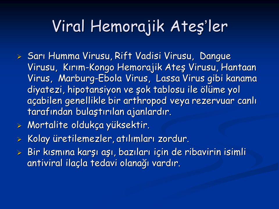 Viral Hemorajik Ateş'ler  Sarı Humma Virusu, Rift Vadisi Virusu, Dangue Virusu, Kırım-Kongo Hemorajik Ateş Virusu, Hantaan Virus, Marburg-Ebola Virus