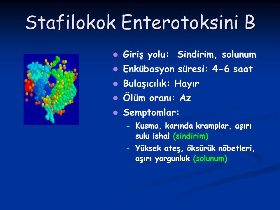 Stafilokok Enterotoksini B Giriş yolu: Sindirim, solunum Enkübasyon süresi: 4-6 saat Bulaşıcılık: Hayır Ölüm oranı: Az Semptomlar: – – Kusma, karında