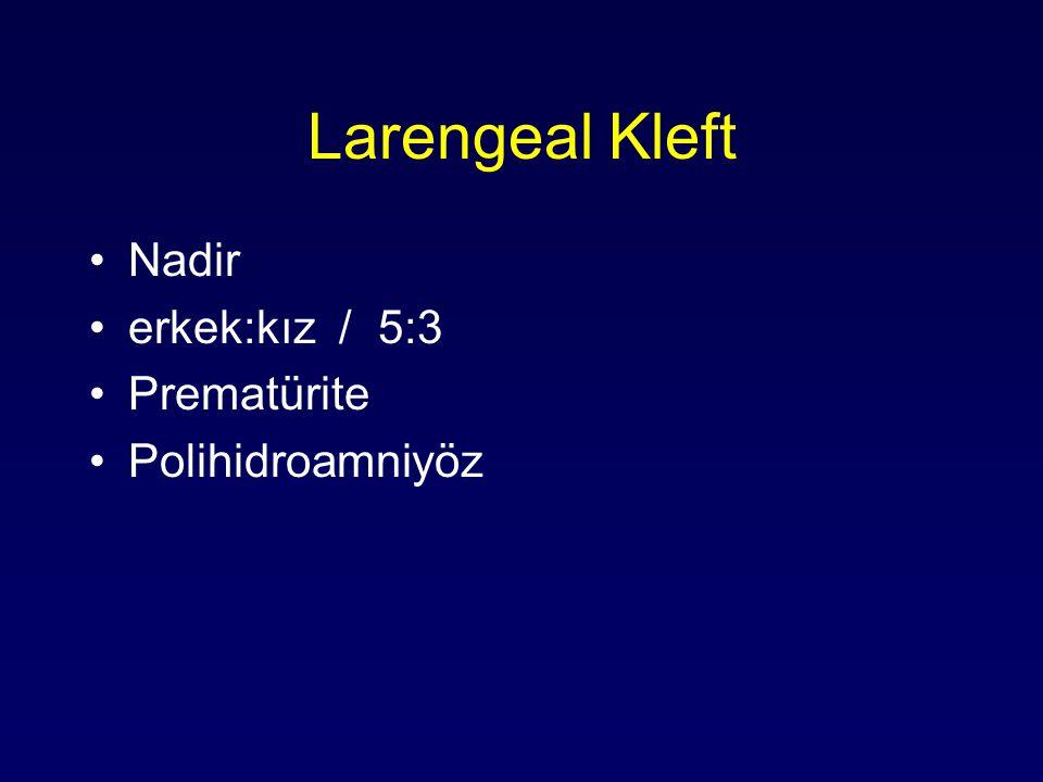 Larengeal Kleft Nadir erkek:kız / 5:3 Prematürite Polihidroamniyöz