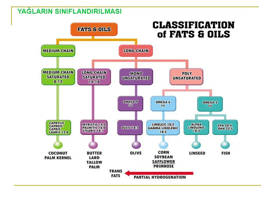 Doymamış Yağ Asitleri Dien YA: Linoleik asit