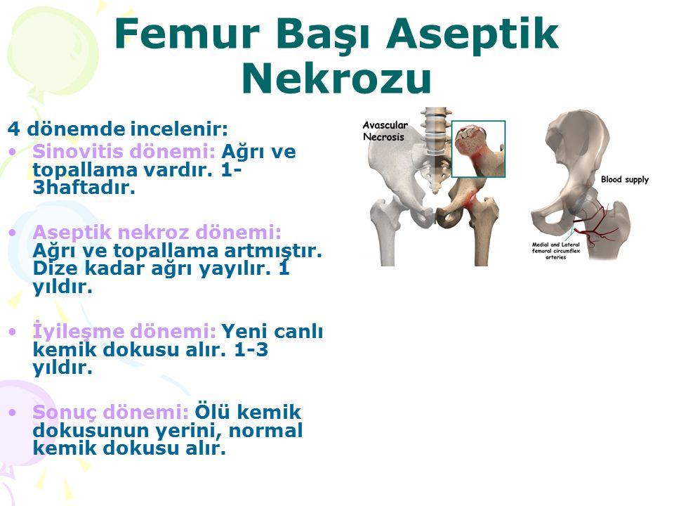 Femur Başı Aseptik Nekrozu 4 dönemde incelenir: Sinovitis dönemi: Ağrı ve topallama vardır. 1- 3haftadır. Aseptik nekroz dönemi: Ağrı ve topallama art