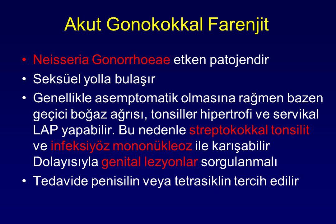 Akut Gonokokkal Farenjit Neisseria Gonorrhoeae etken patojendir Seksüel yolla bulaşır Genellikle asemptomatik olmasına rağmen bazen geçici boğaz ağrısı, tonsiller hipertrofi ve servikal LAP yapabilir.