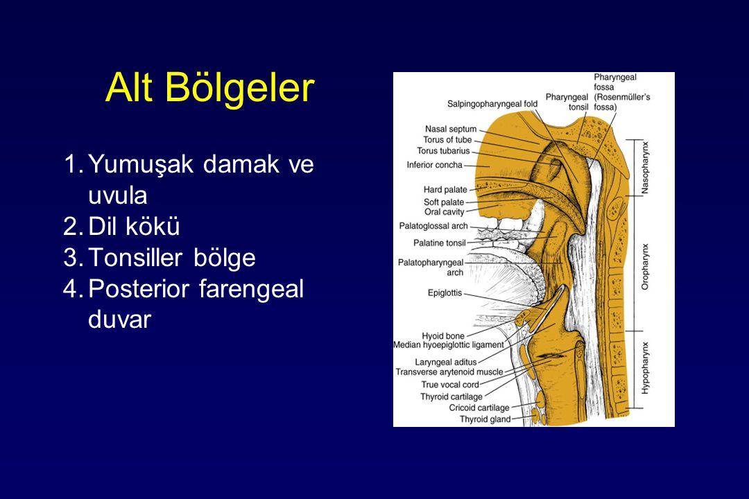 Alt Bölgeler 1.Yumuşak damak ve uvula 2.Dil kökü 3.Tonsiller bölge 4.Posterior farengeal duvar